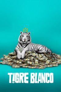 """Poster de la película """"Tigre Blanco"""""""